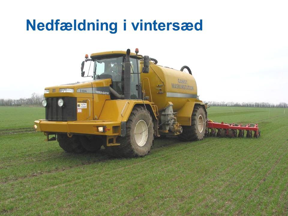 Dansk Landbrugsrådgivning Landscentret Nedfældning i vintersæd