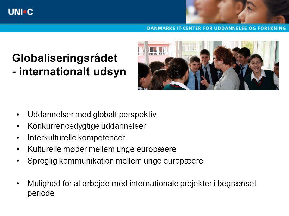 Globaliseringsrådet - internationalt udsyn Uddannelser med globalt perspektiv Konkurrencedygtige uddannelser Interkulturelle kompetencer Kulturelle møder mellem unge europæere Sproglig kommunikation mellem unge europæere Mulighed for at arbejde med internationale projekter i begrænset periode