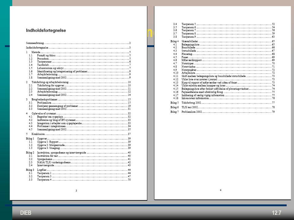 DIEB12.7 Evalueringsrapport: Typisk indholdsfortegnelse