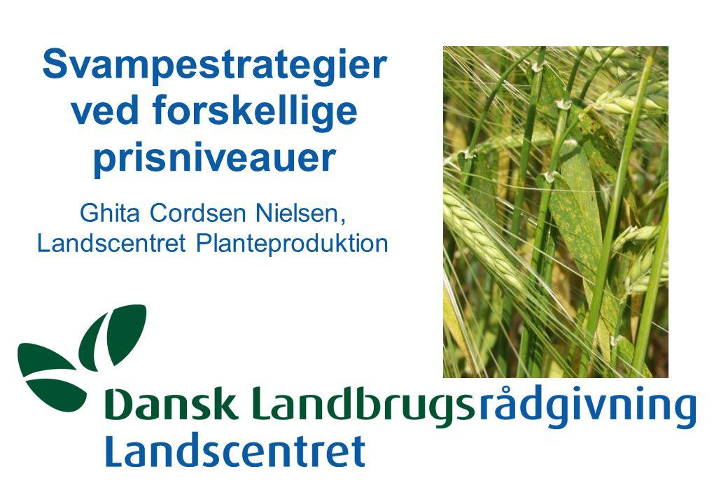 Svampestrategier ved forskellige prisniveauer Ghita Cordsen Nielsen, Landscentret Planteproduktion