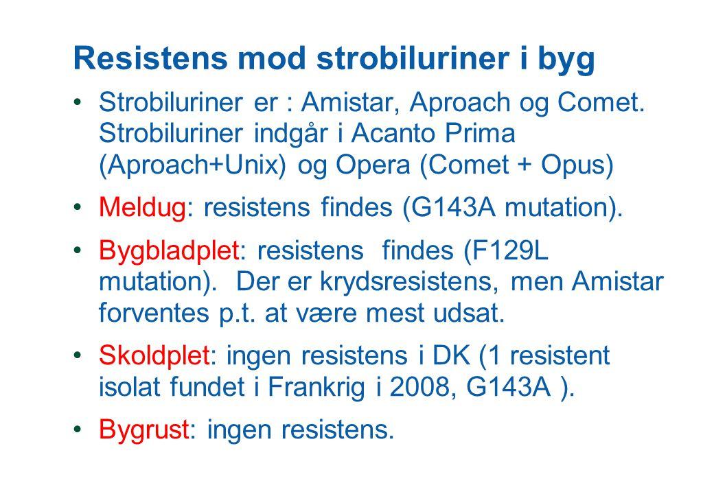 Resistens mod strobiluriner i byg Strobiluriner er : Amistar, Aproach og Comet.