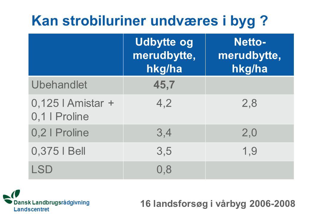 Dansk Landbrugsrådgivning Landscentret Kan strobiluriner undværes i byg .