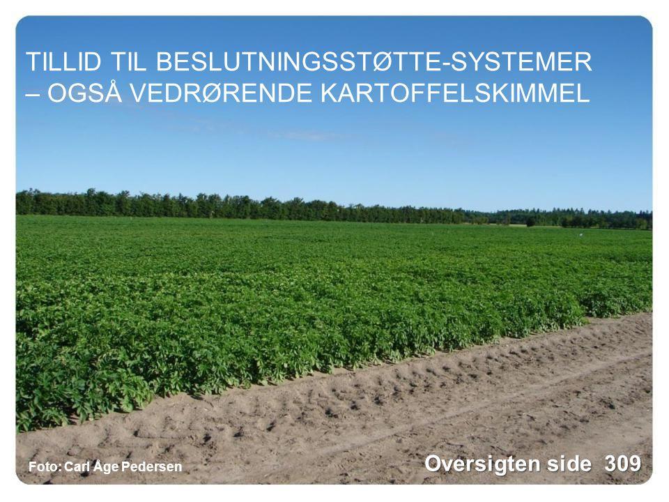 TILLID TIL BESLUTNINGSSTØTTE-SYSTEMER – OGSÅ VEDRØRENDE KARTOFFELSKIMMEL Foto: Carl Åge Pedersen Oversigten side 309
