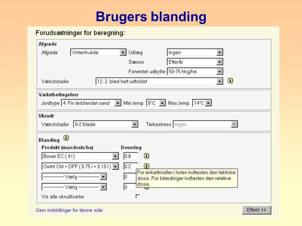 Brugers blanding