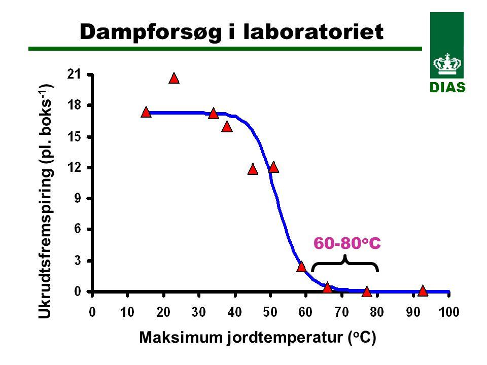 Dampforsøg i laboratoriet DIAS 60-80 o C Maksimum jordtemperatur ( o C) Ukrudtsfremspiring (pl.