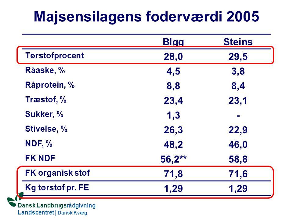 Dansk Landbrugsrådgivning Landscentret | Dansk Kvæg S:\SUNDFODE\Dansk Kvægs Kongres 2004\TEMA 11\Rudolf_Thoegersen.ppt Majsensilagens foderværdi 2005 BlggSteins Tørstofprocent 28,029,5 Råaske, % 4,53,8 Råprotein, % 8,88,4 Træstof, % 23,423,1 Sukker, % 1,3- Stivelse, % 26,322,9 NDF, % 48,246,0 FK NDF 56,2**58,8 FK organisk stof 71,871,6 Kg tørstof pr.