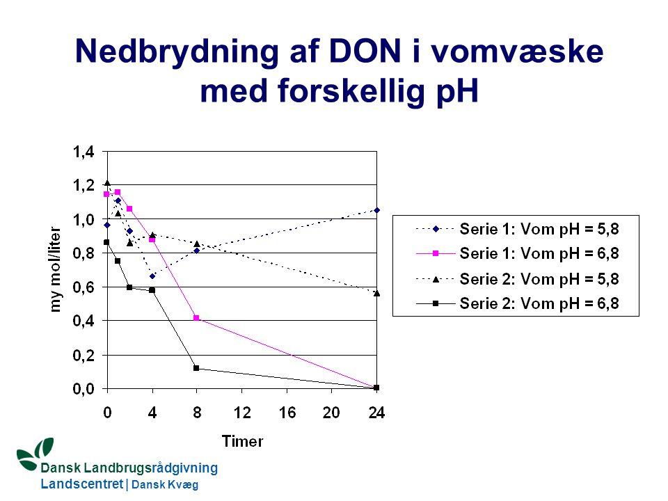 Dansk Landbrugsrådgivning Landscentret | Dansk Kvæg S:\SUNDFODE\Dansk Kvægs Kongres 2004\TEMA 11\Rudolf_Thoegersen.ppt Nedbrydning af DON i vomvæske med forskellig pH