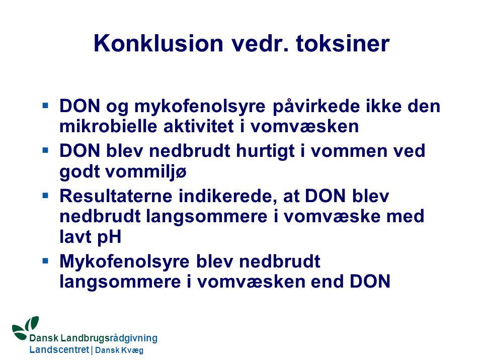 Dansk Landbrugsrådgivning Landscentret | Dansk Kvæg S:\SUNDFODE\Dansk Kvægs Kongres 2004\TEMA 11\Rudolf_Thoegersen.ppt Konklusion vedr.