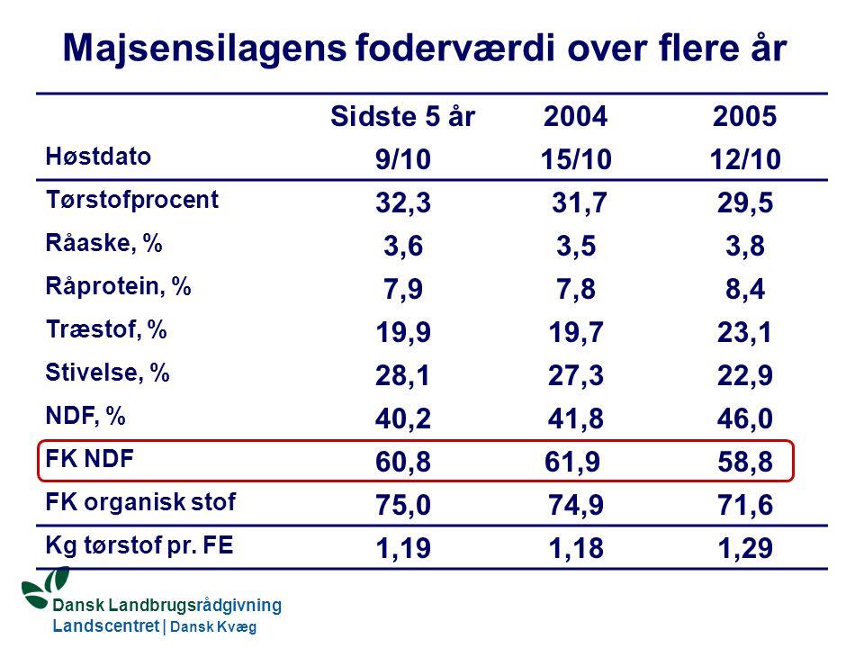 Dansk Landbrugsrådgivning Landscentret | Dansk Kvæg S:\SUNDFODE\Dansk Kvægs Kongres 2004\TEMA 11\Rudolf_Thoegersen.ppt Majsensilagens foderværdi over flere år Sidste 5 år20042005 Høstdato 9/1015/1012/10 Tørstofprocent 32,3 31,729,5 Råaske, % 3,63,53,8 Råprotein, % 7,97,88,4 Træstof, % 19,919,723,1 Stivelse, % 28,127,322,9 NDF, % 40,241,846,0 FK NDF 60,861,9 58,8 FK organisk stof 75,074,971,6 Kg tørstof pr.