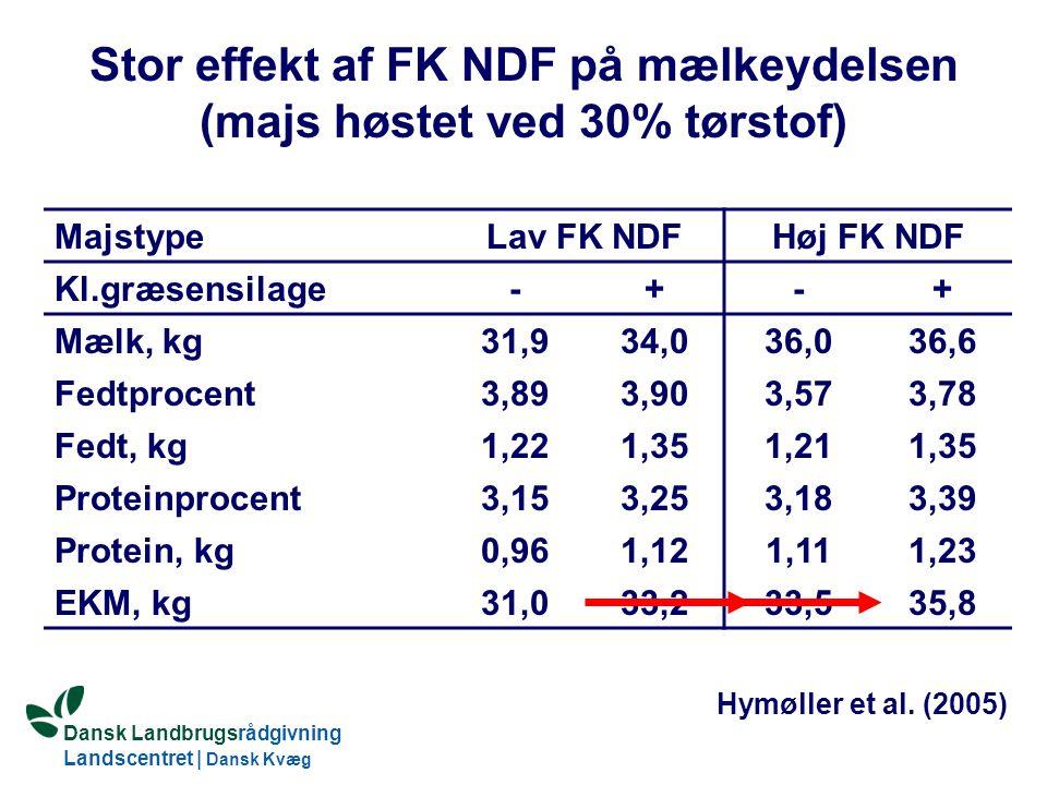 Dansk Landbrugsrådgivning Landscentret | Dansk Kvæg S:\SUNDFODE\Dansk Kvægs Kongres 2004\TEMA 11\Rudolf_Thoegersen.ppt Stor effekt af FK NDF på mælkeydelsen (majs høstet ved 30% tørstof) MajstypeLav FK NDFHøj FK NDF Kl.græsensilage-+-+ Mælk, kg31,934,036,036,6 Fedtprocent3,893,903,573,78 Fedt, kg1,221,351,211,35 Proteinprocent3,153,253,183,39 Protein, kg0,961,121,111,23 EKM, kg31,033,233,535,8 Hymøller et al.