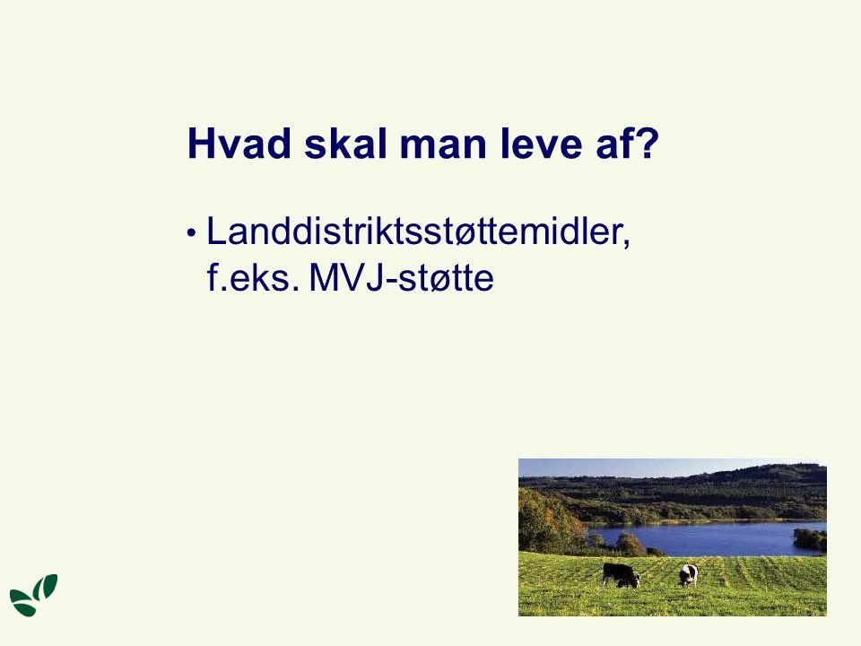 Hvad skal man leve af Landdistriktsstøttemidler, f.eks. MVJ-støtte