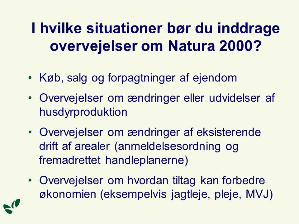 I hvilke situationer bør du inddrage overvejelser om Natura 2000.