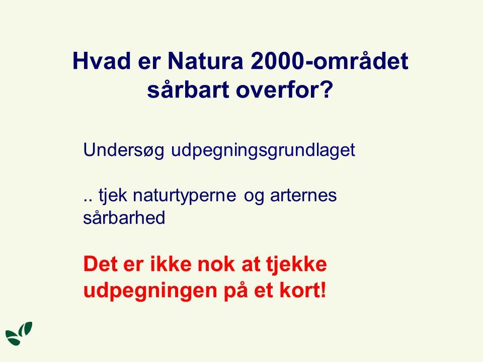 Hvad er Natura 2000-området sårbart overfor. Undersøg udpegningsgrundlaget..