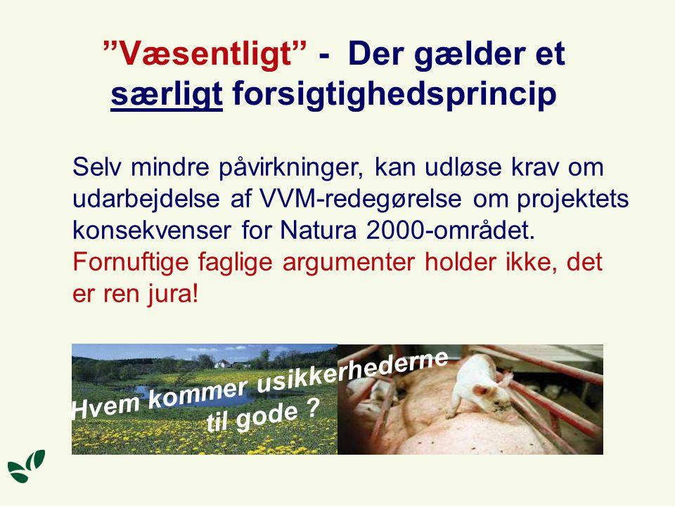 Væsentligt - Der gælder et særligt forsigtighedsprincip Selv mindre påvirkninger, kan udløse krav om udarbejdelse af VVM-redegørelse om projektets konsekvenser for Natura 2000-området.