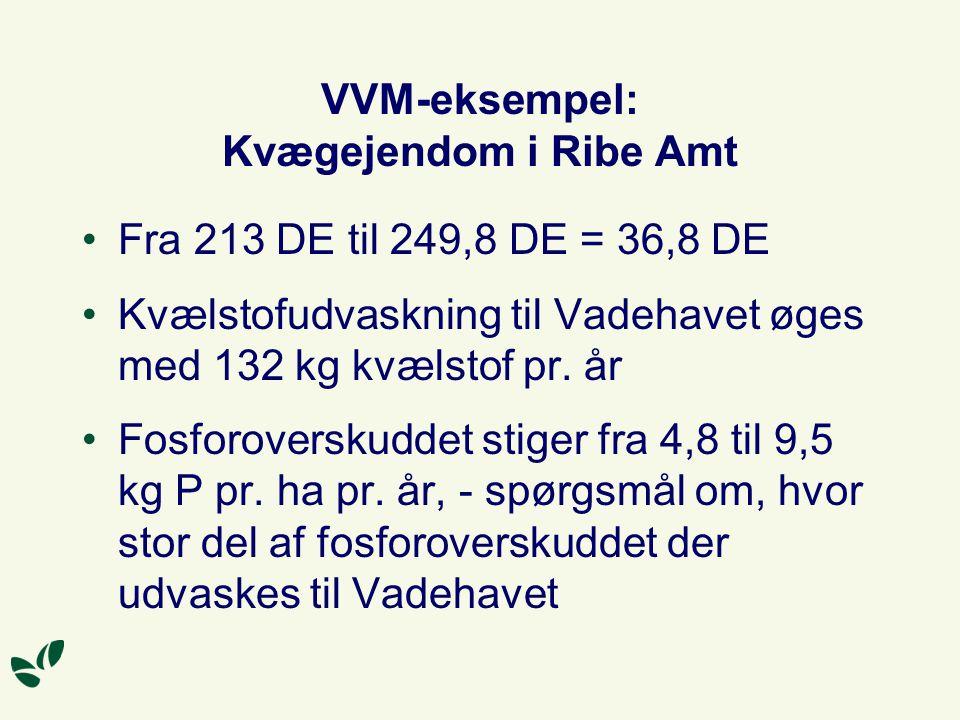 VVM-eksempel: Kvægejendom i Ribe Amt Fra 213 DE til 249,8 DE = 36,8 DE Kvælstofudvaskning til Vadehavet øges med 132 kg kvælstof pr.