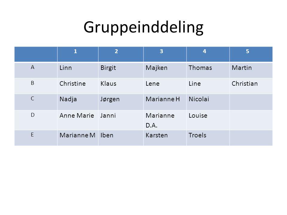 Gruppeinddeling 12345 A LinnBirgitMajkenThomasMartin B ChristineKlausLeneLineChristian C NadjaJørgenMarianne HNicolai D Anne MarieJanni Marianne D.A.