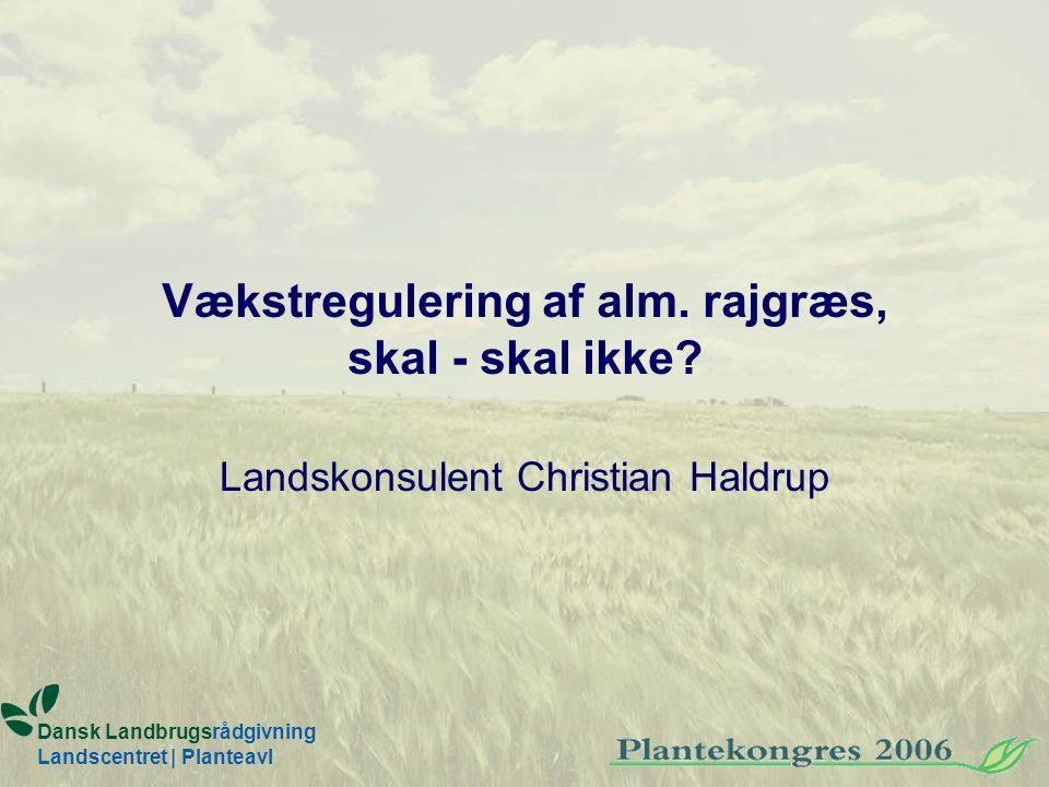 Vækstregulering af alm. rajgræs, skal - skal ikke.