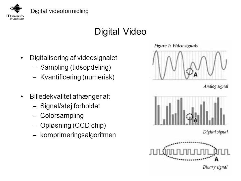 Digital videoformidling Digital Video Digitalisering af videosignalet –Sampling (tidsopdeling) –Kvantificering (numerisk) Billedekvalitet afhænger af: –Signal/støj forholdet –Colorsampling –Opløsning (CCD chip) –komprimeringsalgoritmen