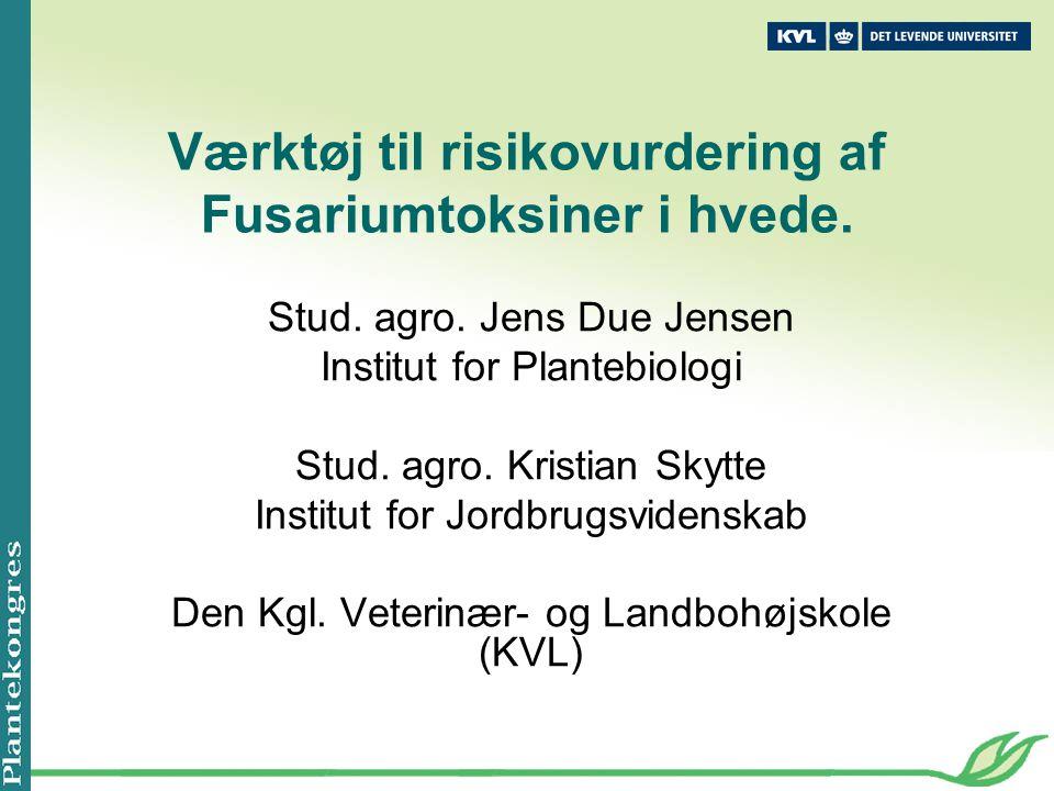 Værktøj til risikovurdering af Fusariumtoksiner i hvede.