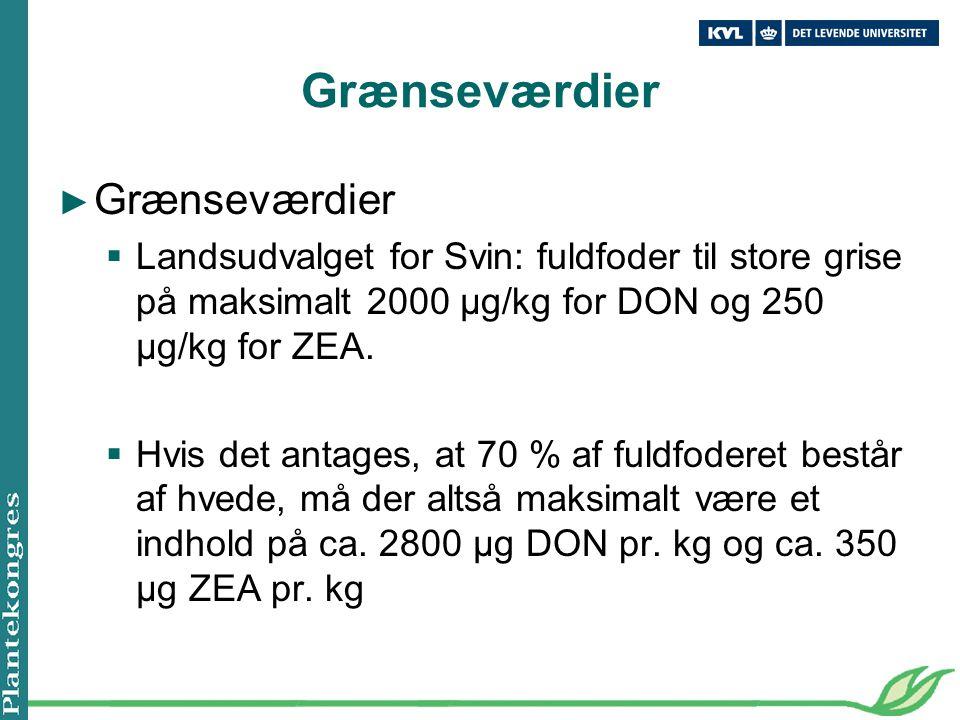 Grænseværdier ► Grænseværdier  Landsudvalget for Svin: fuldfoder til store grise på maksimalt 2000 µg/kg for DON og 250 µg/kg for ZEA.