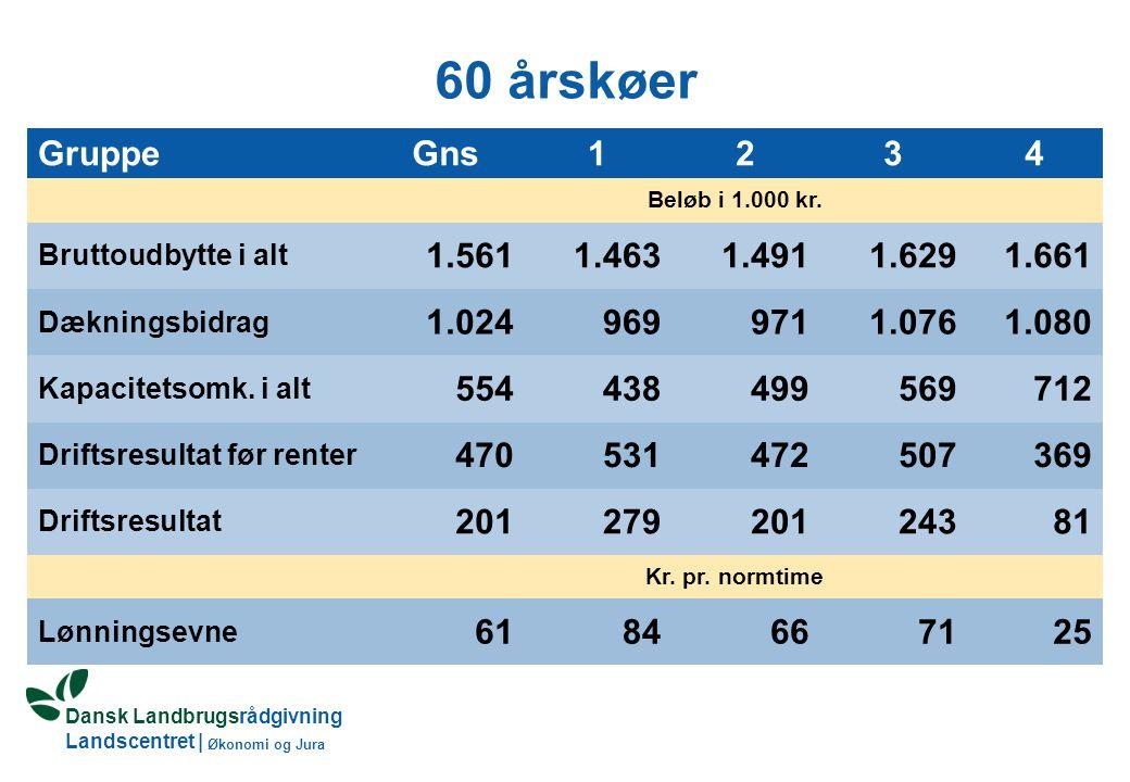 Dansk Landbrugsrådgivning Landscentret | Økonomi og Jura 60 årskøer GruppeGns1234 Beløb i 1.000 kr.