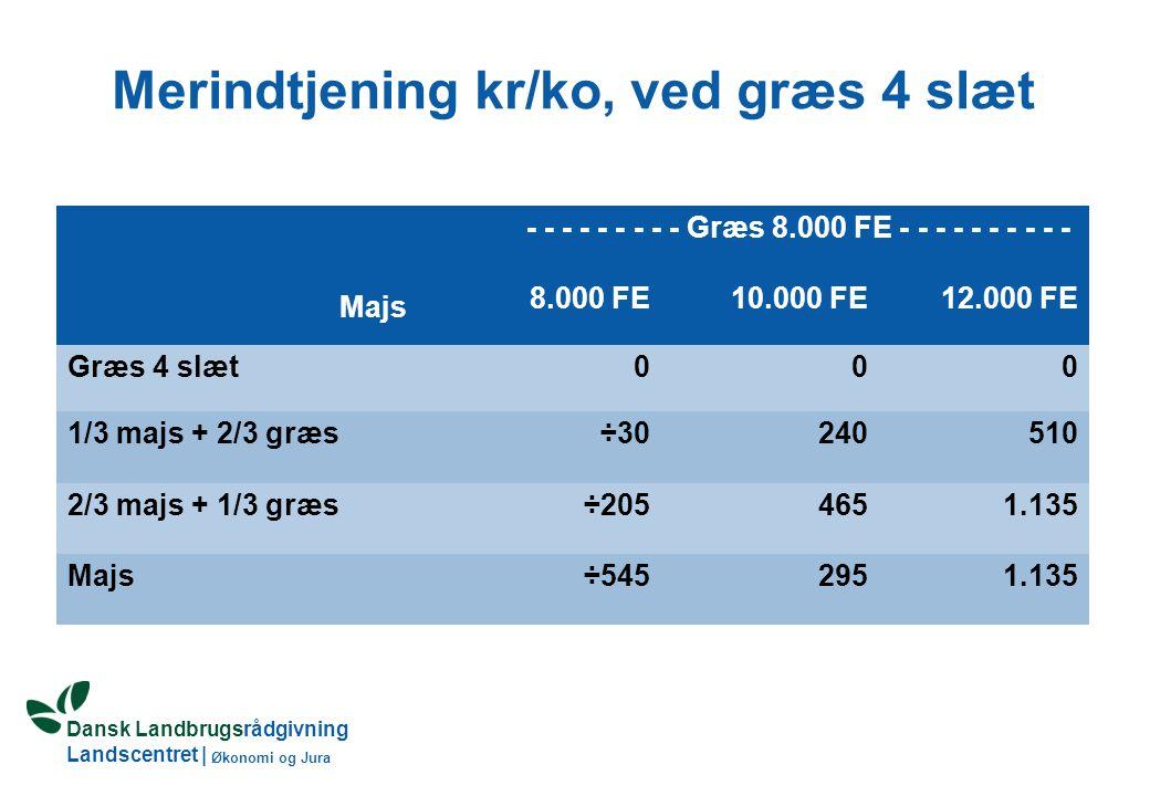 Dansk Landbrugsrådgivning Landscentret | Økonomi og Jura Merindtjening kr/ko, ved græs 4 slæt Majs - - - - - - - - - Græs 8.000 FE - - - - - - - - - - 8.000 FE10.000 FE12.000 FE Græs 4 slæt000 1/3 majs + 2/3 græs÷30240510 2/3 majs + 1/3 græs÷2054651.135 Majs÷5452951.135