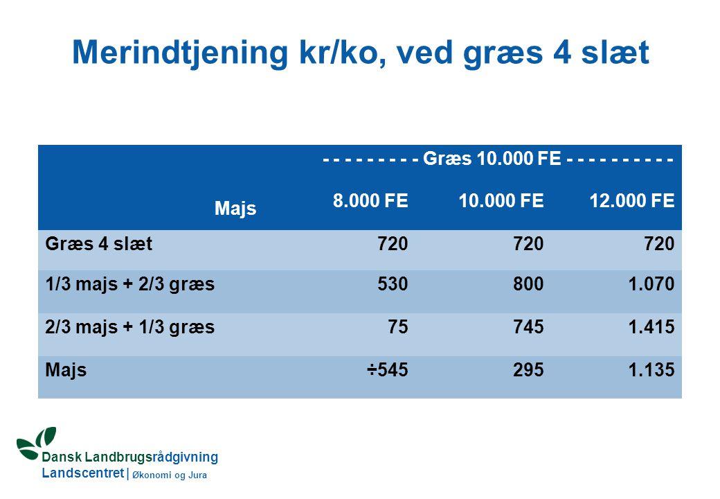 Dansk Landbrugsrådgivning Landscentret | Økonomi og Jura Merindtjening kr/ko, ved græs 4 slæt Majs - - - - - - - - - Græs 10.000 FE - - - - - - - - - - 8.000 FE10.000 FE12.000 FE Græs 4 slæt720 1/3 majs + 2/3 græs5308001.070 2/3 majs + 1/3 græs757451.415 Majs÷5452951.135