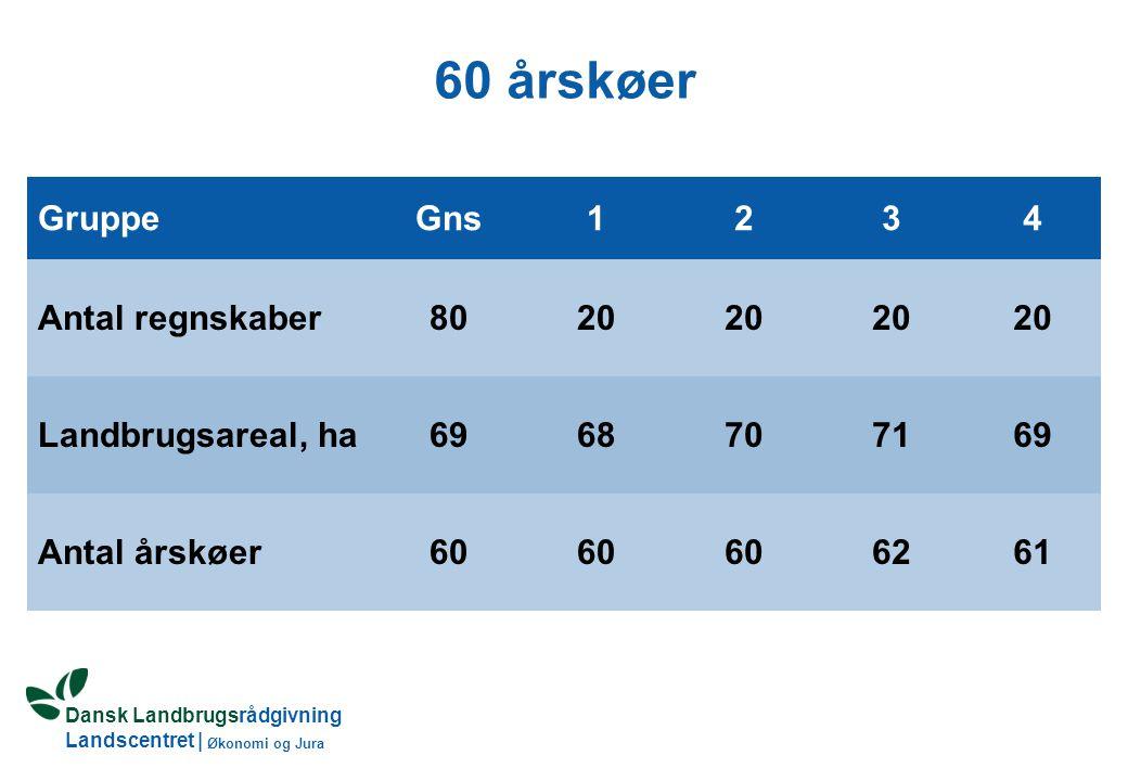 Dansk Landbrugsrådgivning Landscentret | Økonomi og Jura 60 årskøer GruppeGns1234 Antal regnskaber8020 Landbrugsareal, ha6968707169 Antal årskøer60 6261