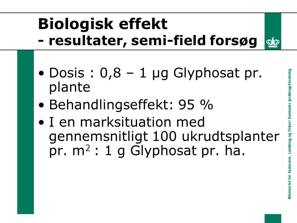 Biologisk effekt - resultater, semi-field forsøg Dosis : 0,8 – 1 μg Glyphosat pr.