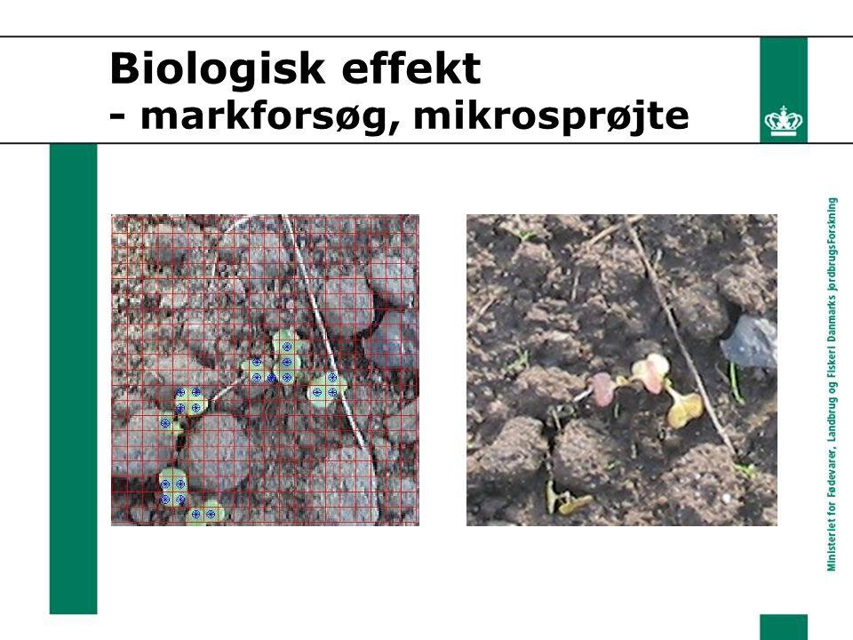 Biologisk effekt - markforsøg, mikrosprøjte