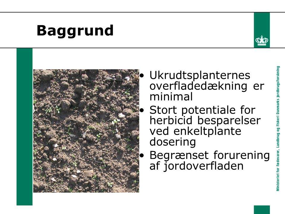 Baggrund Ukrudtsplanternes overfladedækning er minimal Stort potentiale for herbicid besparelser ved enkeltplante dosering Begrænset forurening af jordoverfladen