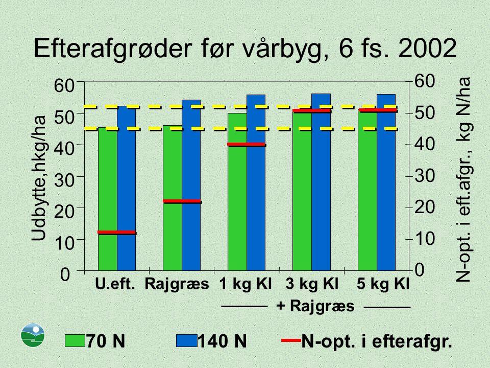 Efterafgrøder før vårbyg, 6 fs.