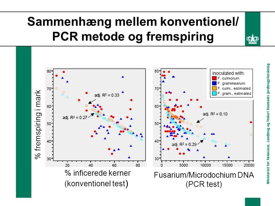 Sammenhæng mellem konventionel/ PCR metode og fremspiring % inficerede kerner (konventionel test ) % fremspiring i mark Fusarium/Microdochium DNA (PCR test)