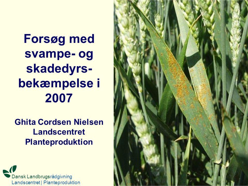 Forsøg med svampe- og skadedyrs- bekæmpelse i 2007 Ghita Cordsen Nielsen Landscentret Planteproduktion Dansk Landbrugsrådgivning Landscentret | Planteproduktion