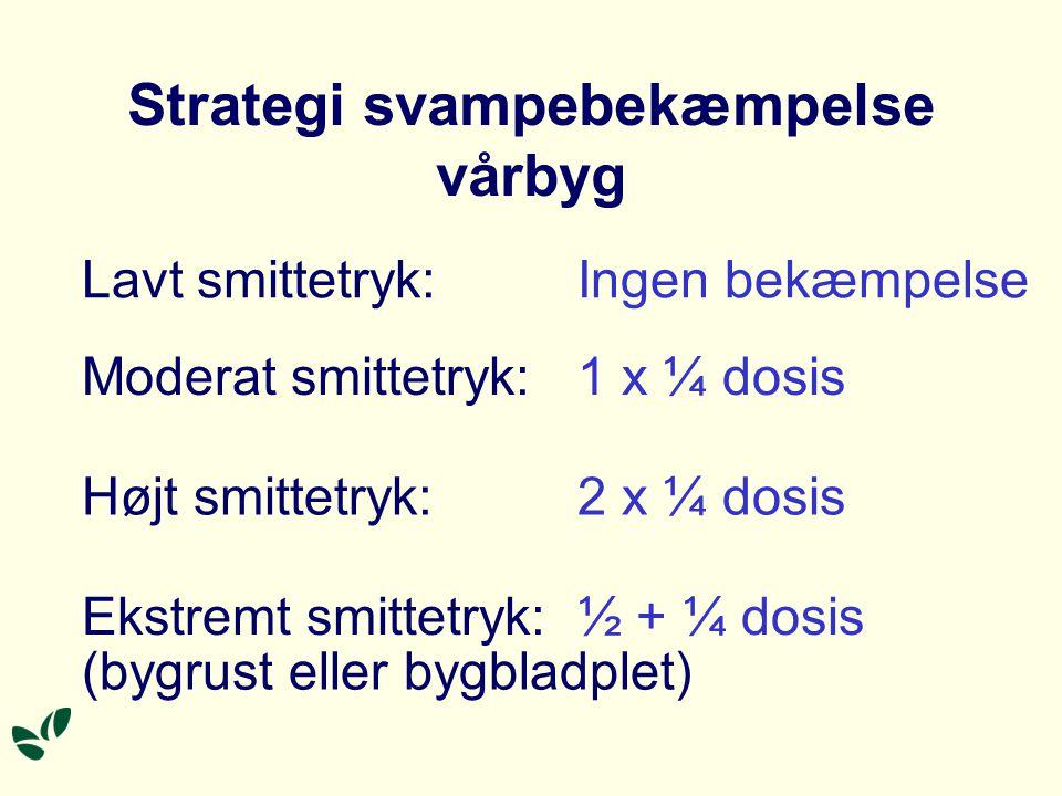 Strategi svampebekæmpelse vårbyg Lavt smittetryk:Ingen bekæmpelse Moderat smittetryk:1 x ¼ dosis Højt smittetryk:2 x ¼ dosis Ekstremt smittetryk:½ + ¼ dosis (bygrust eller bygbladplet)