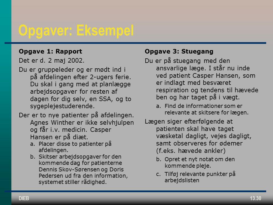 DIEB13.30 Opgaver: Eksempel Opgave 1: Rapport Det er d.