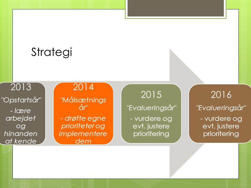 Strategi 2013 Opstartsår - lære arbejdet og hinanden at kende 2014 Målsætnings år - drøfte egne prioriteter og implementere dem 2015 Evalueringsår - vurdere og evt.