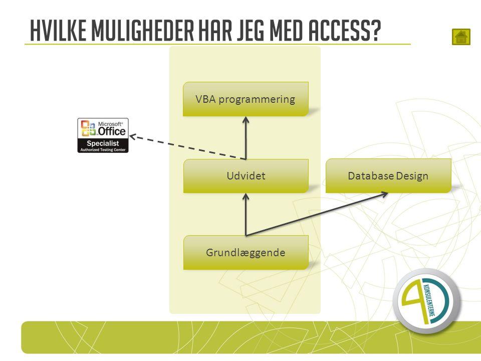 Hvilke muligheder har jeg med Access Grundlæggende Udvidet VBA programmering Database Design