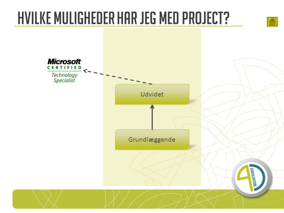 Hvilke muligheder har jeg med Project Grundlæggende Udvidet