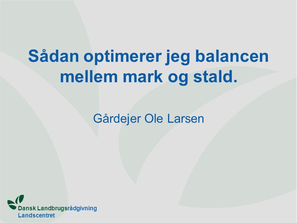 Dansk Landbrugsrådgivning Landscentret Sådan optimerer jeg balancen mellem mark og stald.