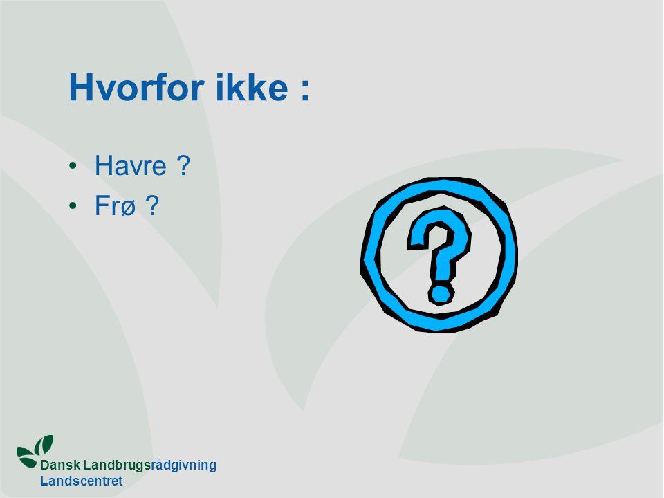 Dansk Landbrugsrådgivning Landscentret Hvorfor ikke : Havre Frø