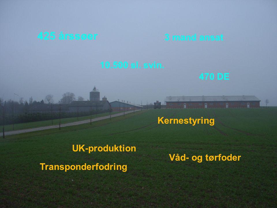 Dansk Landbrugsrådgivning Landscentret 425 årssøer 3 mand ansat 10.500 sl.