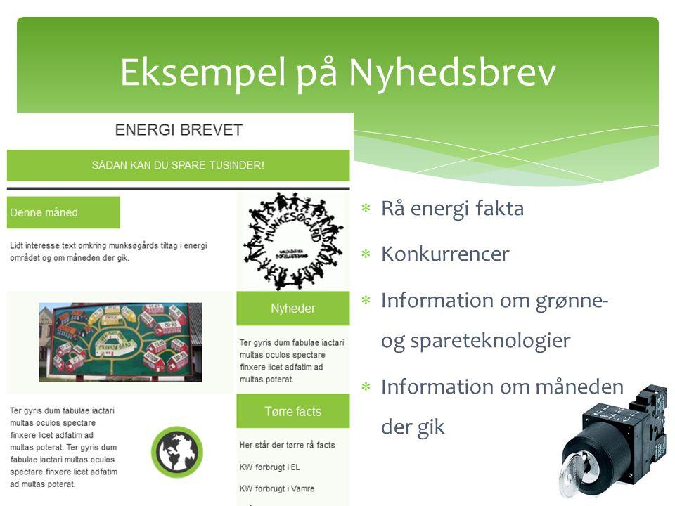  Rå energi fakta  Konkurrencer  Information om grønne- og spareteknologier  Information om måneden der gik Eksempel på Nyhedsbrev