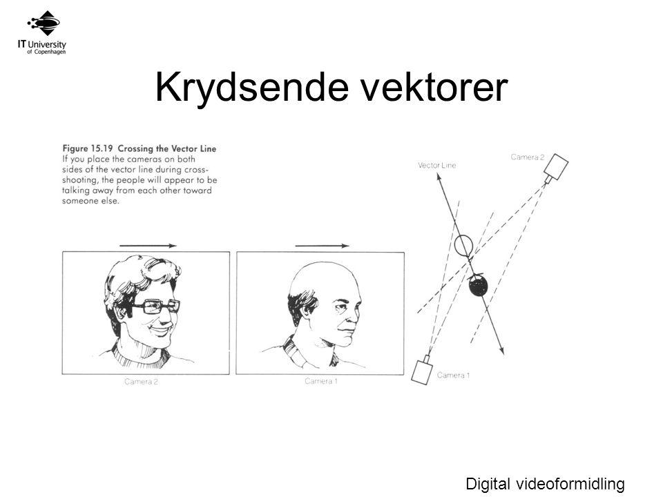 Digital videoformidling Krydsende vektorer