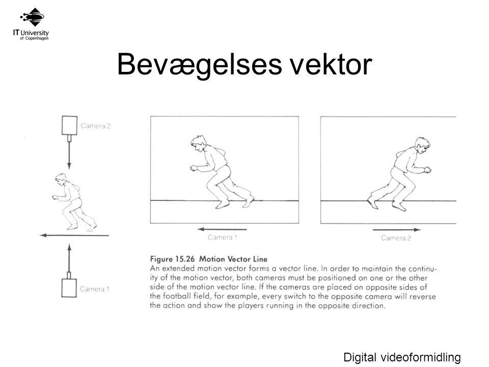 Bevægelses vektor