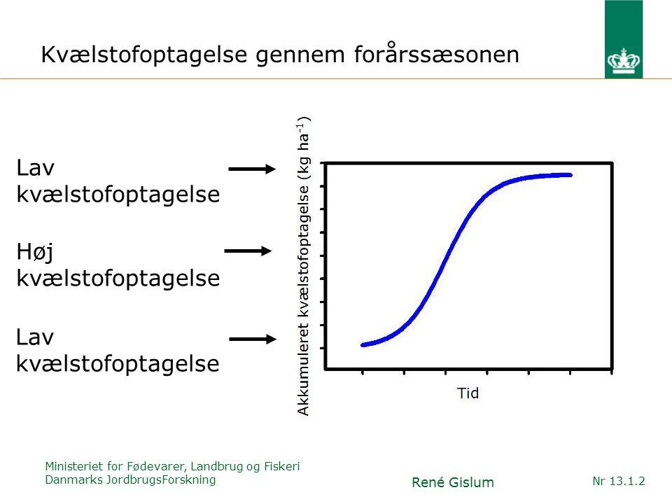 Ministeriet for Fødevarer, Landbrug og Fiskeri Danmarks JordbrugsForskning René Gislum Nr 13.1.2 Kvælstofoptagelse gennem forårssæsonen Lav kvælstofoptagelse Høj kvælstofoptagelse Lav kvælstofoptagelse