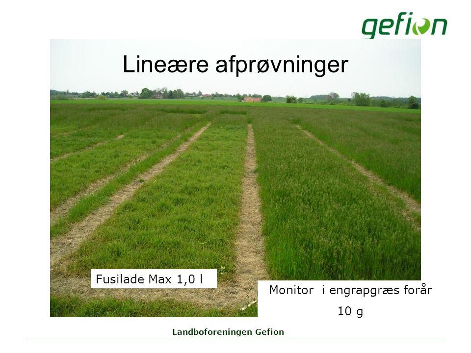 Landboforeningen Gefion Lineære afprøvninger Monitor i engrapgræs forår 10 g Fusilade Max 1,0 l