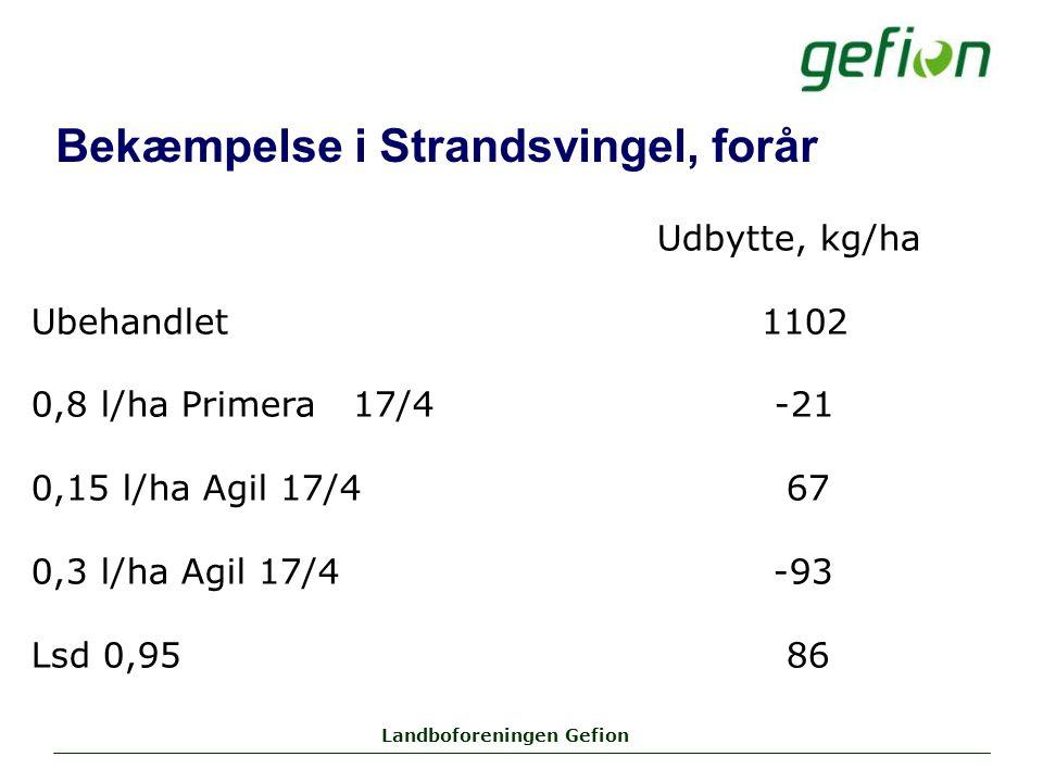 Landboforeningen Gefion Bekæmpelse i Strandsvingel, forår Udbytte, kg/ha Ubehandlet1102 0,8 l/ha Primera 17/4 -21 0,15 l/ha Agil 17/4 67 0,3 l/ha Agil 17/4 -93 Lsd 0,95 86