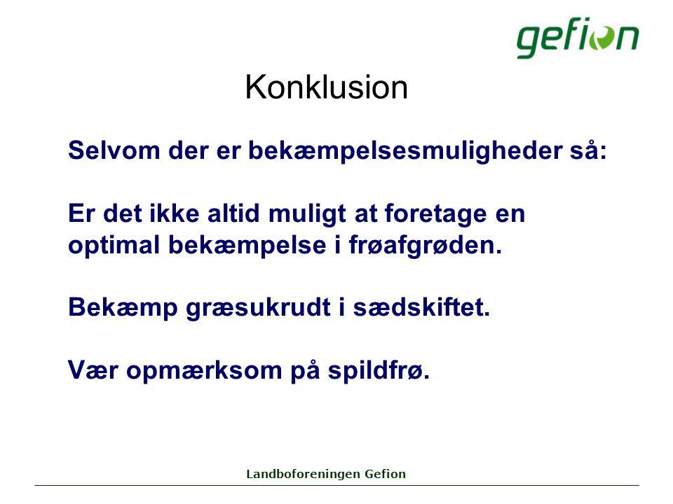 Landboforeningen Gefion Konklusion Selvom der er bekæmpelsesmuligheder så: Er det ikke altid muligt at foretage en optimal bekæmpelse i frøafgrøden.