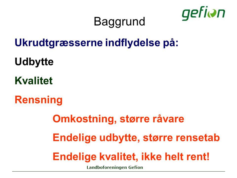 Landboforeningen Gefion Baggrund Ukrudtgræsserne indflydelse på: Udbytte Kvalitet Rensning Omkostning, større råvare Endelige udbytte, større rensetab Endelige kvalitet, ikke helt rent!